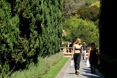 Greystone Park (Prayitno / Thank you for (12 millions +) view) Tags: greystone park beverly hills outdoor walking path pedestrian walkway activity young beauty sexy hot blond blonde girl tanktop jogging tight pants row trees beverlyhills los angeles ca california