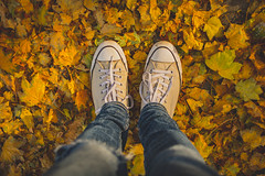 'Runaway' but by Ramin Djawadi (DOKTOR WAUMIAU) Tags: d7200 ishootraw nikon autumn berlin herbst lightroom treptow 35mm chucks chucktaylor sneakers leaves leaf yellow