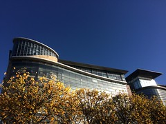 Autumn in the city (markshephard800) Tags: trees autumn fall glasgow scotland office building modern curve curves uk autumnal light