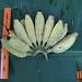 Kluai Namwa Khom_Hand