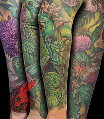 Praying Mantis Dragonfly Thistle Fern Fiddlehead Nature Flower Floral Color Realistic Sleeve Tattoo by Jackie Rabbit