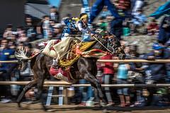 お供馬 (Hiro_A) Tags: otomouma horse child kikuma imabari ehime shikoku japan shrine shrineritual kamoshrine autumn festival nikon d7200 tamron 70300mm 70300 jockey