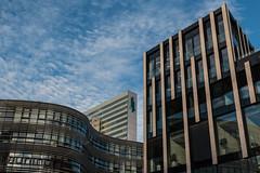 Düsseldorf KöBogen (wb.fotografie) Tags: deutschland nordrheinwestfalen düsseldorf landeshauptstadt köbogen architektur blauestunde germany northrhinewestphalia dusseldorf statecapital architecture bluehour