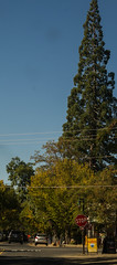 2018 Angels Camp Trip (7 of 100) (JIM Mourgos) Tags: angelscamp astrophotography calaverascounty california goldrush mercercaverns moaningcaverns morgiepix55 mourgos mourgosfreelance murphys planets stars