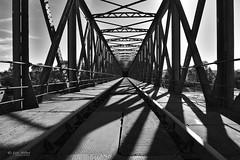 DSC_8467_5 (Eric RIFLET) Tags: pont bridge blackandwhite lumiere light structure train lignes