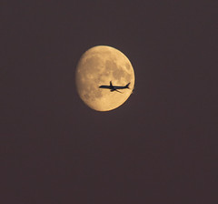 Moon Fly-by 21 Oct 2018 (Sculptor Lil) Tags: london waxinggibbous aeroplane moonrise handheld moon airplane canon700d moonflyby dusk