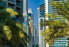 Dubai Marina (Смирнов Павел) Tags: dubai marina yachts skyscraper city uae emirates building landscape embankment boat beach дубай марина яхты небоскреб город оаэ эмираты здание пейзаж набережная катер пляж road architecture sky tree people photo