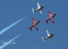 DSC_6576w (Mephisto3) Tags: rcaf snowbirds 431sqdn aerogatineau2018 gatineau acrobatic cynd airshow demo avgeek