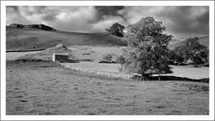 Dowel Dale barn (G. Postlethwaite esq.) Tags: bw derbyshire lightroom silverefex sonya7mkii staffordshire autumn barn blackandwhite drystonewall fields fullframe grass landscape mirrorless monochrome outdoor photoborder trees