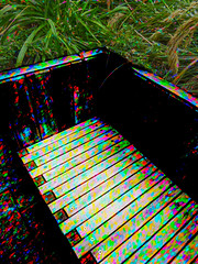 Waiting for the Magic Bus (Steve Taylor (Photography)) Tags: benchseat digitalart bench seat colourful rainbow newzealand nz southisland canterbury christchurch city cbd leaves plant foliage