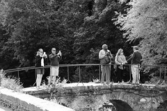 Lets All take A Photo (WorcesterBarry) Tags: blackwhite bnw blackandwhite candid street streetphotography streetphoto england adventure nature monochrome places people photographers paths outdoors lovebw kindness humour happiness heritage travel tourists funny river weather old invasion urban sky guys style camera photpgraphy