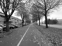 Transportgatan, Göteborg, 2018 (biketommy999) Tags: göteborg sverige sweden biketommy biketommy999 2018 svartvitt blackandwhite hisingen bäckebol