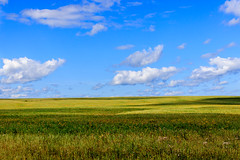 Summer field (man_from_siberia) Tags: summer field siberia august sky clouds landscape canon eos 200d dslr canoneos200d canon200d canonrebelsl2 canonef40mmf28stm pancakelens russia россия сибирь