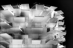 L'arbre blanc / The white tree (vedebe) Tags: architecture ville city rue street urbain urban noiretblanc netb nb bw monochrome montpellier fenêtres