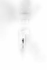 untitled (ChrisRSouthland) Tags: brisbane elmarit28mmf28 leicammonochrom mm bw blackwhite blackandwhite indoor monochrome museum minimal minimalistic