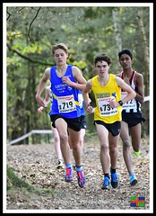 Joel Cottingham (2) (nowboy8) Tags: nikon nikond500 xc nationalxcrelays mansfield berryhillpark notts crosscountry relays relay woods cleethorpesac cleeac team