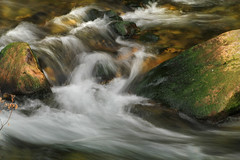 Swift Creek (arbyreed) Tags: arbyreed swiftcreek spring springfedcreek intermittentspring periodicspring slowshutterspeed stream troutstream brook rocks moss lincolncountywyoming afton