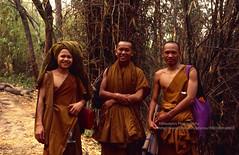 Loei, Phu Kradueng NP, hiking monks (blauepics) Tags: thailand east loei scenery thai trees bäume forest wald jungle urwald phu kradueng national park nationalpark bamboo bambus plant pflanze men männer mönche buddhist buddhistische smiles lachen orange hiking wandern 1994 isaan isarn monks