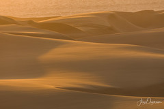Sunset storm (Jerzy Orzechowski) Tags: wind dunes sand sunset namibia sandwichharbour storm yellow orange shadows