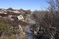 Vikerkilen 1.6, Hvaler, Norway (Knut-Arve Simonsen) Tags: asmaløy hvaler norge норвегия norway noriega norwegen norvegia norvège नॉर्वे 挪威 ノルウェー நோர்வே νορβηγία sydnorge sørnorge østlandet glomma oslofjorden østfold norden scandinavia скандинавия э́стфолл фре́дрикстад гло́мма ослофьорд vann hav benk gress tre hytte brygge water sea bench grass tree cottage pier banco de mar agua hierba árbol cabaña muelle wasser meer bank gras baum hütte acqua panca albero molo вода морской скамейка трава дерево коттедж пирс erba mare vikerkilen