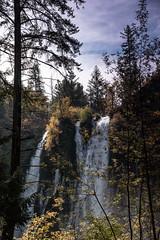 Falls_119978 (gpferd) Tags: clouds plant tree water waterfall burney california unitedstates us
