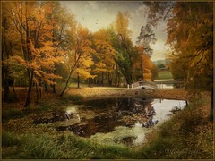 Autumn in Obninsk. (odinvadim) Tags: mytravelgram iphoneart autumn iphone iphoneography iphoneonly forest painterlymobileart snapseed textures travel textured landscape