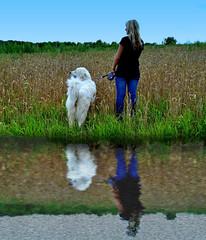 Water Reflections (ClaraDon) Tags: photoshop manipulation waterreflections