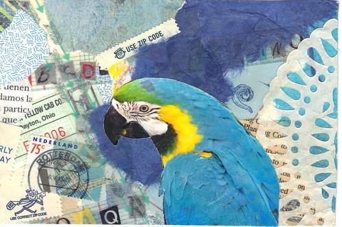 Blue Parrot pc