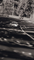 Porsche 911 GT3 RS (at1503) Tags: bw blackandwhite porsche porsche911gt3rs 911gt3rs track circuit nurburgring germany germancar sportscar trees graffiti depthoffeild foregroundblur blur motion movement gtsport granturismo granturismosport motorsport racing game gaming ps4 car