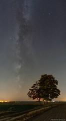Autumn Milkyway (Piotr Potepa) Tags: milkyway autumn stars night nightscape nightscapes nikon poland torun piotrpotepa
