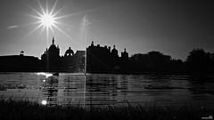 Le château et le cygne de Chantilly (Un jour en France) Tags: chantilly château cygne monochrome oise canoneos6dmarkii canonef1635mmf28liiusm contrejour soleil blancetnoir blancetnoirfrance