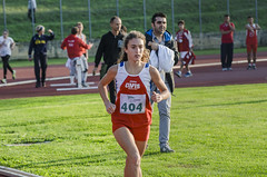 Rachele Tittarelli
