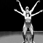 Dance ¬ 4723 thumbnail