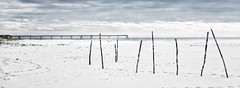 ... (a.penny) Tags: beach strand france atlantic aw120 nikon panorama coolpix apenny