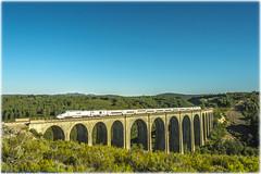 Alvia en el Viaducto del Truchas (440_502) Tags: alvia 730 014 madrid chamartín viaducto del río truchas robledo de senabria sanabria pontevedra grupo renfe operadora viajeros directo galicia zamora ourense