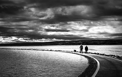 046 Marine Lake (georgestanden) Tags: blackandwhite black white monochrome desaturated photo photography photograph bnw art picture photooftheday blackandwhitephotography bw monoart marinelake lake westkirby wirral thewirral people water clouds path walking man woman dog animal nature reflection sun sunny shadow footpath walkway abstractmsea seascape merseyside sea ocean sky seaside beach fineart blackwhite