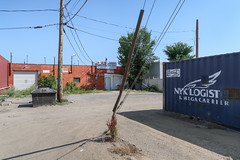 Favourite utility pole guywire touchdown weed, in an expanse of gravel at a NYK Logistics & Megacarrier shipping container. (Tim Kiser) Tags: 2018 20180729 broadstreet canada img6394 july july2018 nyk nykline nyklogistics nyklogisticsmegacarrier nyklogisticsandmegacarrier nipponyusen nipponyusenkabushikikaisha oslerstreet rsssigns reginacanada reginasaskatchewan reginasaskatchewancanada saskatchewan saskatchewandrive southrailwaystreet thecontainerguy blueintermodalcontainer blueshippingcontainer cloudlesssky electriclines electricpoles garagedoor gravel gravelarea gravellot greasedumpster guyanchor guywire guywireanchor guywirecover intermodalcontainer logo megacarrier missingletters orangebuilding overheadelectriclines overheadpowerlines powerlines satellitedish satellitedishantenna shippingcontainer signbusiness signcompany southsaskatchewan southcentralsaskatchewan southernsaskatchewan sunny telephonepoles utilitypoles weeds txtchg