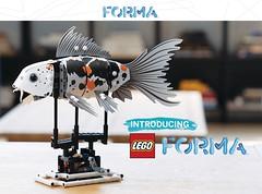 Forma Main Model