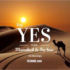 MARRAKECH TO FEZ TOUR (FEZGUIDE) Tags: marrakech morocco maroc rabat casablanca agadir tanger moroccan casa fes travel fashion marocaine meknes marrakesh oujda tetouan photography wanderlust nador africa travelblogger moroccanstyle maghreb