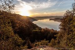 Morgens am Baldeneysee (Re Ca) Tags: baldeneysee essen goldenhour goldenestunde ruhr ruhrgebiet ruhrpott sonnenaufgang stadtessen sunrise nrw landscape