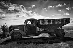 Chevy Farm Truck (D E Pabst Photography) Tags: agriculture neglected rusted abandoned southeastwashington monochrome automotive truck adamscounty hopperbottom farm chevrolet blackandwhite ruraldecay washington
