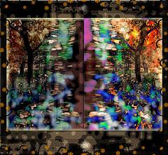 Enfrentados (seguicollar) Tags: imagencreativa photomanipulación art arte artecreativo artedigital virginiaseguí árbol árboleda díptico mirror duplicado espejo otoño