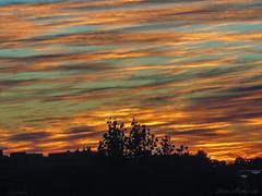 Burlington MA Sunrise_8728 (smack53) Tags: smack53 sunrise morning morningsky paintedsky sky clouds autumn autumnseason fall fallseason burlington massachusetts canon powershot sx530hs canonpowershotsx530hs