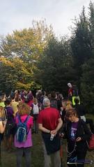 Selva-de-Irati-octubre-2018-senderismo (ANDARA RUTAS) Tags: irati selva navarra isaba bosque holzarte senderismo ruta grupo andara andararutas octubre puente pilar 2018 otoño