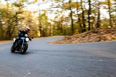 Honda CB600F Hornet (2) (Marcel Svět) Tags: october canon eos 760d panning motorbike motorcycle honda hornet color