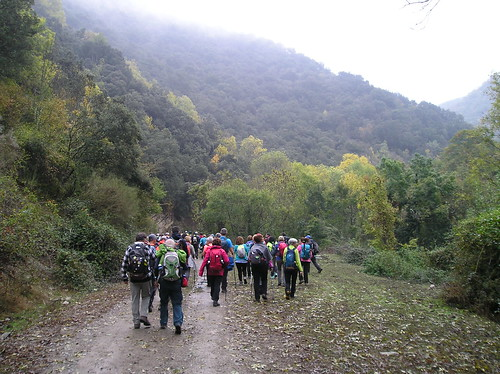 Marcha de Senderismo Bosque del Roñas Logroño Fotografia Javi Cille (5)