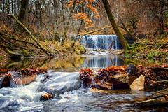Late Fall At Hidden Falls - Nerstrand Big Woods State Park, MN (j-rye) Tags: creek stream hiddenfalls sonyalpha sony mirrorless water trees forest rock leaves onlyinmn nerstrandbigwoodsstatepark 50mm14rokkorx sonya7rm2 minnesota