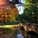 Geyser Lake Bridge - Spring Grove Cemetery & Arboretum