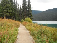 Emerald Lake Field B.C. (Mr. Happy Face - Peace :)) Tags: autumn fall canada nature emeraldlake britishcolumbia art2018 scenery landscape lodge hikingtrails september rockies rockymountains canadaparks cans2s