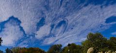 Amazing cirrus eye - Cavum (ChemiQ81) Tags: cavum polska poland polen polish polsko chemiq польша poljska polonia lengyelországban польща polanya polija lenkija ポーランド pólland pholainn פולין πολωνία pologne puola poola pollando 波兰 полша польшча outdoor niebo sky sosnowiec zagłębie zagłębiowskimszlakiem blue cirrus clouds chmury pogoda weather panorama fallstreak hole prześwit poopadowy